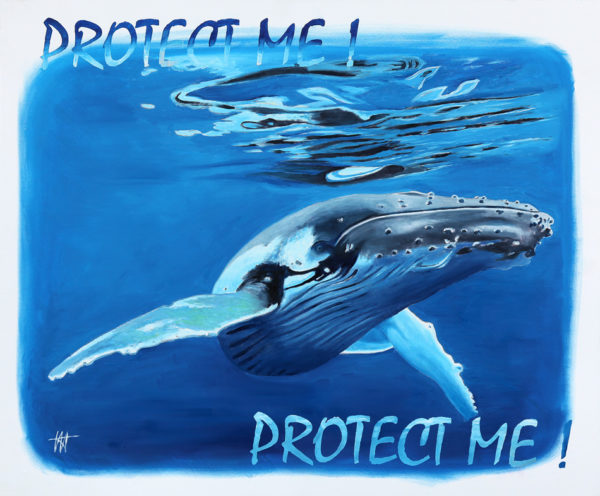 antibes, baleines, espèces menacées, galerie venturini, JJV, Juan les pins, mammifères marins, mer, SEA SHEPHERD