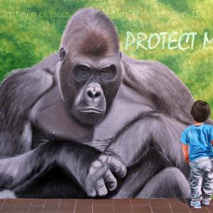 Dian Fossey, République démocratique du Congo, gorilles de montagne, San Francisco, zoologiste, primatologue américaine.
